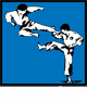Online Taekwon-Do Training
